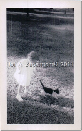 """""""This is a stray cat that I haven't seen since. I still don't see how we got Pat to touch the thing."""""""