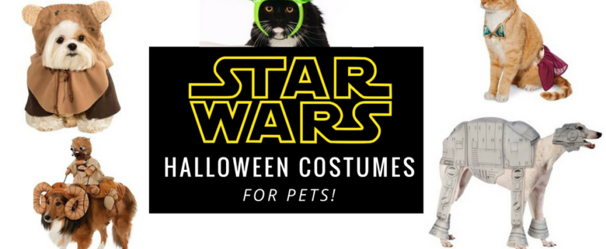 twitter-star-wars-halloween-costumes-for-pets